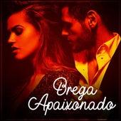 Brega apaixonado by Various Artists