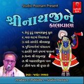 Shreenathji Ne Kalavala by Shailesh