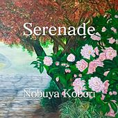 Serenade by Nobuya  Kobori