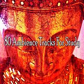 80 Ambience Tracks for Study de massage