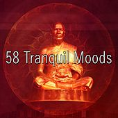 58 Tranquil Moods von Massage Therapy Music
