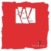 I Wanna Destroy You by The Soft Boys