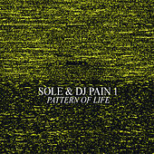 Pattern of Life by Sole