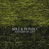 Pattern of Life von Sole