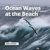 Ocean Waves at the Beach by Ocean Sounds (1)