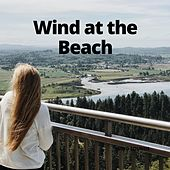 Wind at the Beach by Relaxation Channel