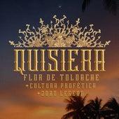 Quisiera by Cultura Profética Flor De Toloache