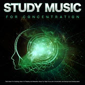 Study Music for Concentration: Calm Music For Studying, Music For Reading and Relaxation, Music For Deep Focus and Concentration and Background Studying Music de Studying Music