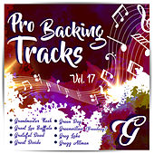 Pro Backing Tracks G, Vol.17 by Pop Music Workshop