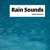 Rain Sounds by Relaxation Channel