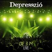 DE3,14 Live by Depresszió