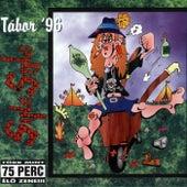Összezárva '89/'99 - Tábor '96 (Koncert) by Sing-Sing