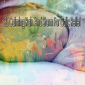 35 Calming Rain and Storm for Colic Relief von Rain Sounds (2)