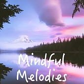Mindful Melodies by Various Artists