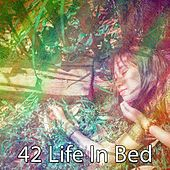 42 Life in Bed by Water Sound Natural White Noise