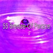 55 Breeze of Peace de Zen Music Garden