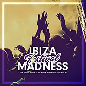 Ibiza Festival Madness, Vol. 5 de Various Artists