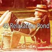 45 Relaxation Pond de Best Relaxing SPA Music
