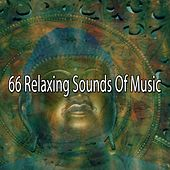 66 Relaxing Sounds of Music von Massage Therapy Music