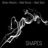 Shapes van Matt Renzi Brian Melvin