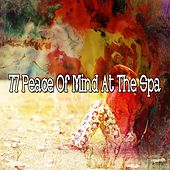 77 Peace of Mind at the Spa by Sounds Of Nature