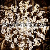 48 Cultivate Your Soul by Sleepicious