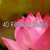 40 Resting Relief de Nature Sounds Nature Music (1)