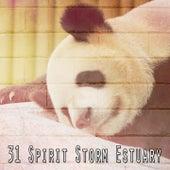 31 Spirit Storm Estuary by Rain Sounds and White Noise