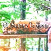 43 Journey to Sleep von S.P.A
