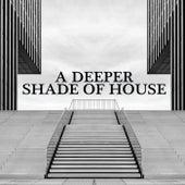 A Deeper Shade of House de Various Artists