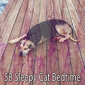 58 Sleepy Cat Bedtime by Deep Sleep Music Academy