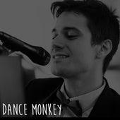 Dance Monkey by Rodrigo Pandeló