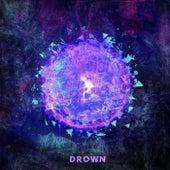 Drown de Despite the Fallen