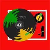 Out (Remix) [feat. Serani] by Dloxx