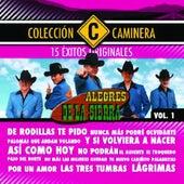 15 Exitos by Los Alegres De La Sierra