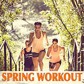 Spring Workout by Various Artists