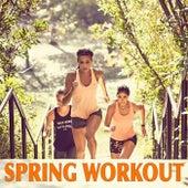 Spring Workout von Various Artists