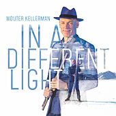 In a Different Light de Wouter Kellerman