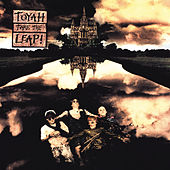 Take the Leap! (Deluxe Edition) by Toyah