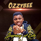 Journey of Life by OzzyBee