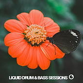 Liquid Drum & Bass Sessions 2019 Vol 5 by Various Artists