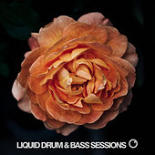 Liquid Drum & Bass Sessions 2019 Vol 4 by Various Artists