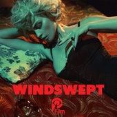 Windswept by Johnny Jewel
