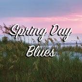 Spring Day Blues von Various Artists