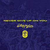 Never Give Up On You by Judah & the Lion