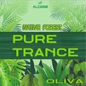 Pure Trance -Native Forest de Oliva