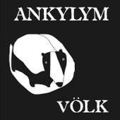 Völk de Ankylym