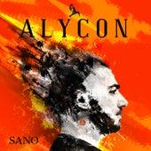 Alycon by Sano