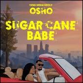 Sugar Cane Babe de Osho