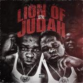 Lion of Judah von Q790